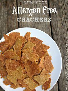 Allergen Free Crackers – Gluten Free, Dairy Free, Nut Free, Egg Free