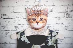 http://melinasouza.com/2015/06/23/fashion-haul-she-in-antiga-she-inside/  Melina Souza - Serendipity  <3
