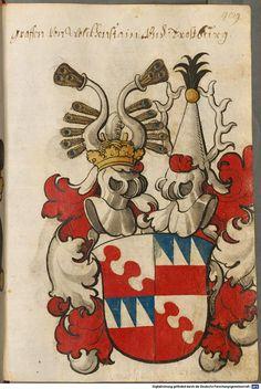 Scheibler'sches Wappenbuch Süddeutschland, um 1450 - 17. Jh. Cod.icon. 312 c Folio 489
