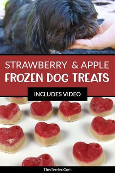 This healthy strawberry apple and peanut butter recipe is a firm favourite with … – Mad Pup Life – Homemade baby foods Frozen Dog Treats, Diy Dog Treats, Homemade Dog Treats, Dog Treat Recipes, Baby Food Recipes, Apple And Peanut Butter, Peanut Butter Dog Treats, Peanut Butter Recipes, Dog Cookies