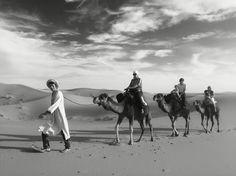 Dromedar Trip Erg Chebbi #Sahara #Merzouga #Morocco