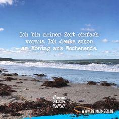 Ich bin schon am Meer. >>