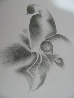 desenho46