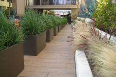 Planters | Planters Fiberglass FRP GFRC Balcony Rooftop Garden Custom Condo Wood ...