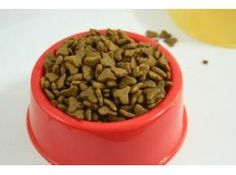 Global Dog Food Sales Market Report 2017