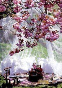 Цвета, цветы, полог, шатер, в саду, пикник