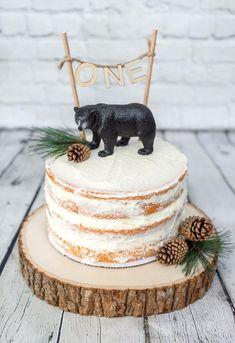 Children photography / baby photography / 1st year photoshoot / smash the cake / wild bear / 1st birthday cake / forest cake