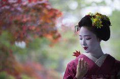 Oiran & Geisha | November photoshoot with the maiko Mamefuji! ...