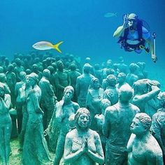 """Diving in the Musa Underwater Museum in Mexico Under The Water, Under The Sea, Underwater Museum Mexico, Places Around The World, Around The Worlds, Underwater Photography, Nature Animals, Nature Pictures, Land Scape"