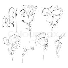 Vektor af 'blomster, tegning, sæt'