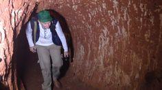 Caverna feita por animal gigante é encontrada no Brasil
