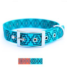 KISS MY MUTT® 'Geo Print' Collection Dog Collar 	 - PetSmart