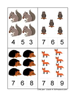 Forest animals math activities for preschoolers Montessori Math, Preschool Learning Activities, Preschool Worksheets, Kindergarten Math, Teaching Math, Preschool Activities, Kids Learning, Math Numbers, Math Concepts