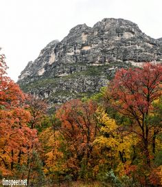 McKittrick Canyon, Guadalupe Mountains National Park,Texas