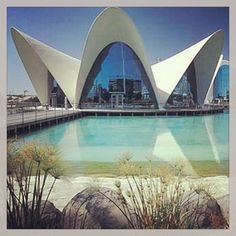 Valencia- The aquarium was so different! The architecture is amazing!-M