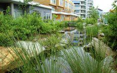 Jardin en ville en 22 exemples pour créer votre oasis superbe
