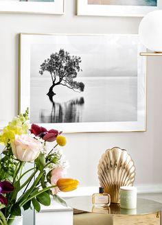 Wanaka Tree Poster - Affiche Nature Nouvelle Zélande - Posterstore.fr Morning Sun, Inhale Exhale, Arches, Vase, Home Decor, Fotografia, Nature Posters, Natural Phenomena, Dandelion