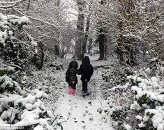 When I was a kid, there were no buses. We walked 10 miles in the snow, through the woods, just to go to school. ;P