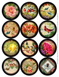 725. Flora & Fauna 2.625-inch circles