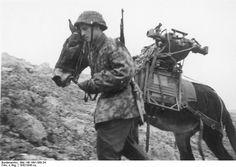 Bundesarchiv Bild 146-1991-068-34, SS-Karstwehr-Bataillons…