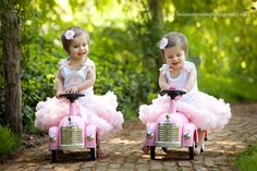 Google Image Result for http://www.babylifestyles.com/images/parties/twin-bird-first-birthday-party/twin-girl-pink-bird-first-birthday-party-girls-playing-in-tutus.jpg