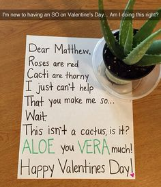 Dear Matthew, Roses are red Cacti are thorny I just can't help That you make me so...  Wait! This isn't a cactus, is it! ALOE you VERA much!  Happy Valentines Day!