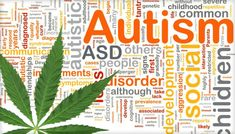 Study Shows The Therapeutic Effects of Marijuana on Autistic Children