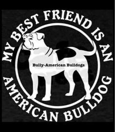 My best friend is an American Bulldog