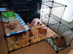 Need some ideas or inspiration for building your own indoor rabbit cage? Here's a great idea!