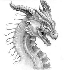 Do love to see Dragon Drawings? Well, we have collected the top 30 realistic drawings for your inspiration you will love. Realistic Dragon Drawing, Dragon Head Drawing, Dragon Artwork, Realistic Drawings, Dragon Drawings, Amazing Drawings, Cool Drawings, Pencil Drawings, Pencil Art