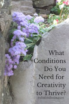 Where will you thrive as a creative writer? In traditional publishing or as an indie publisher? Food for thought! | IndieKidsBooks.com