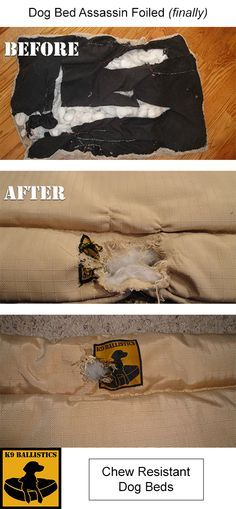 does your dog destroy his bed leaving a huge mess behind stop the chewing