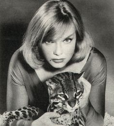 58 Best Anne Francis Images Anne Francis Hollywood Glamour Actresses