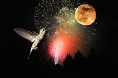 """Fly Me to the Moon"" - cards and prints available. Great job Lynn!"