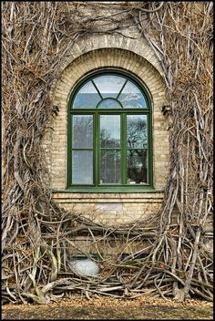 Another window from my dream house.