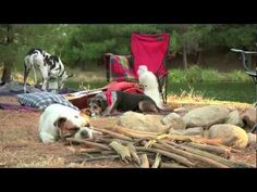Subaru Commercial - Camping