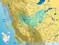 The Peace River is a river in Canada that originates in the Rocky Mountains of northern British Columbia and flows to the northeast through north