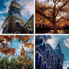 Sometimes you can't capture all the beauty of #Baylor in one picture! (via bswiftyy / bayloruniversity on Instagram)