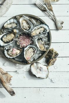 te matuku bay oysters with mignonette dressing