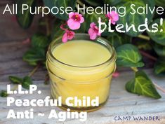 DIY - 3 NEW All~Purpose Healing Salve Blends!  (coconut oil, olive oil, beeswax, EO's = 4- 4oz jars) → →  Dry cracked heels, Chapped hands, Chapped lips, Scaly elbows, After shower moisture, Scratches, bruises, cuts, insect bites, Fungal infections, Diaper rash, Hand sanitizer/ moisturizer, Wound salve for horses and dogs