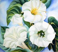 Georgia O'Keeffe, Jimson weed, painting. Georgia O'keeffe, Alfred Stieglitz, Wisconsin, Beautiful Flower Drawings, Beautiful Flowers, White Flowers, Paint Flowers, Georgia O Keeffe Paintings, Renoir