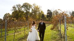 """The theme for this wedding was """"Tuscan Vineyard"""", and we are instantly transported to the countryside of Italy.  Tracy is a classically gorgeous bride, and she seems to glide about the vineyard with an effortless grace.  [michael allen photography](http://www.michaelallenphotography.com) was behind the lens on this beauty, and gives us a fall wedding that reflects the season to sheer perfection.  Seriously, you can feel the changing of the seasons and the chill in the air on your skin when…"""
