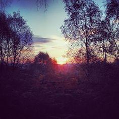 The breaking of dawn... #Padgram