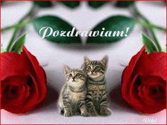 Najładniejsze gify: Gify na dzień dobry Cats, Quotes, Facebook, Coffee, Rose, Blog, Beautiful, Christians, Polish