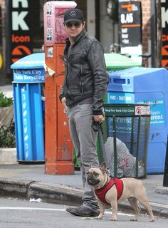 Jeremy Renner Walking His Dog. Love that dude now more than ever!