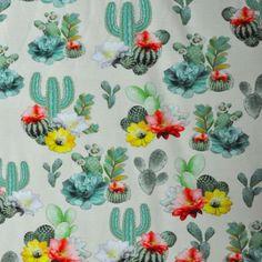 Cactus plantjes tricot