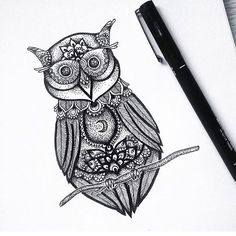 Great illustration by @jill_islay #designspiration #creative #design #lettering - View this on http://ift.tt/1LVCgmr