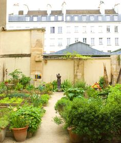 jardin des oiseaux Marais Paris...what many gardens aspire to be...