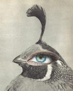 """Saatchi Online Artist yann faucon; Assemblage / Collage, """"Allégorie"""" #art"""
