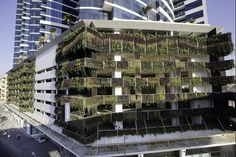 The Novotel #Dubai Al Barsha also comes equipped with an irrigation and plant feeding system, including the hanging garden wall, which takes up 1,200 square metres and contains about 27,000 plants.